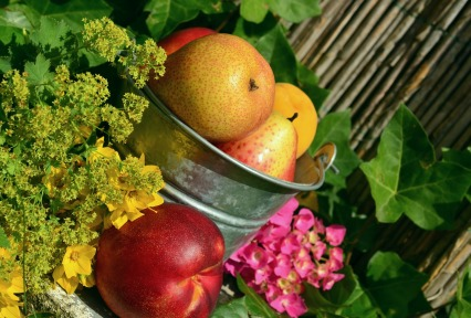 fruits-850491_1920